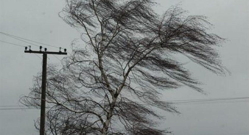 Ветер обесточил 334 населенных пункта