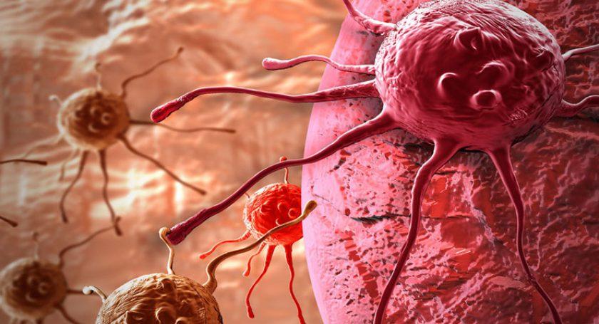 Медики уверены, что раковые клетки питаются жирами организма