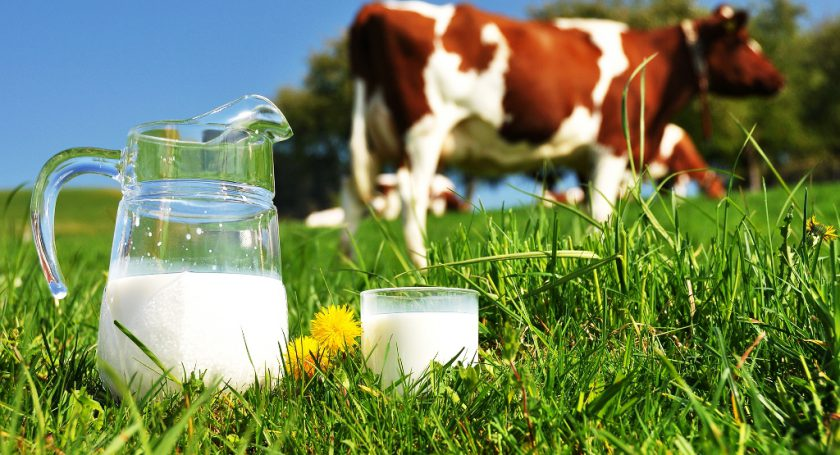 Минсельхоз оценил экспорт молока Республики Беларусь  в Российскую Федерацию  в $3 млрд