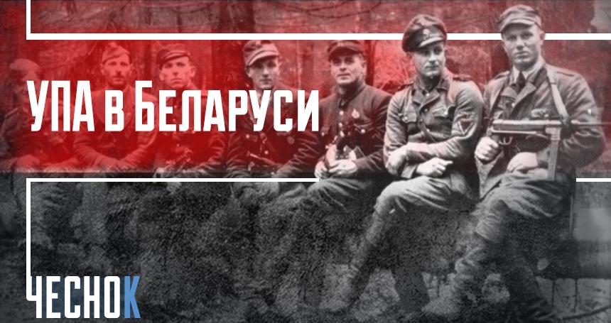 УПА в Беларуси
