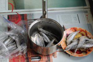 Рыба салака, разделённая на 3 части