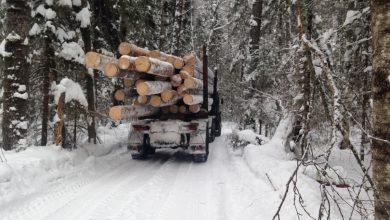 Лесовоз зимой