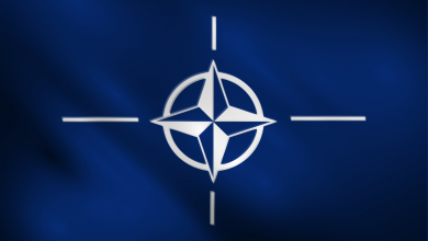 Синее полотнище с белым символом НАТО на