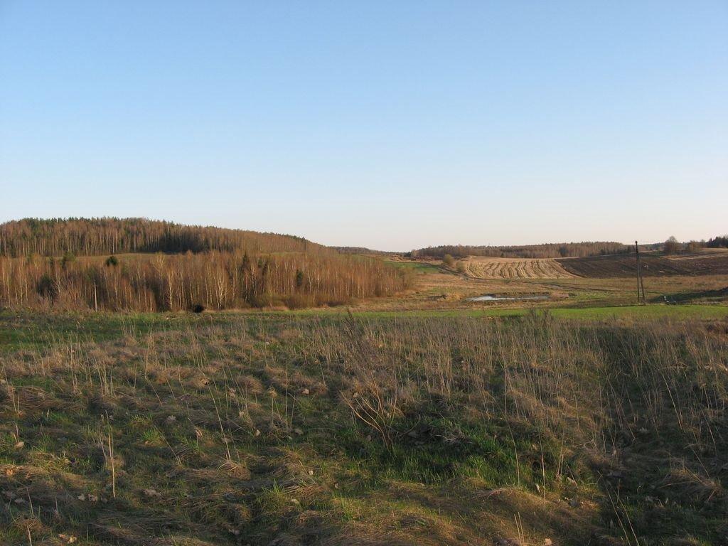 Деревня Кузевичи