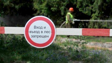 Запрет на посещение леса