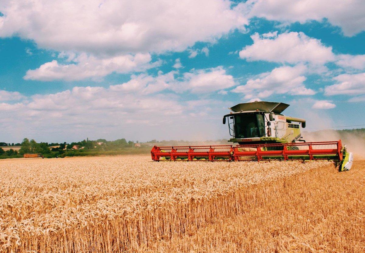 Картинка сельское хозяйство беларуси