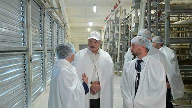 Президент Беларуси Александр Лукашенко совершил 25 июля рабочую поездку в Ветковский район Гомельской области