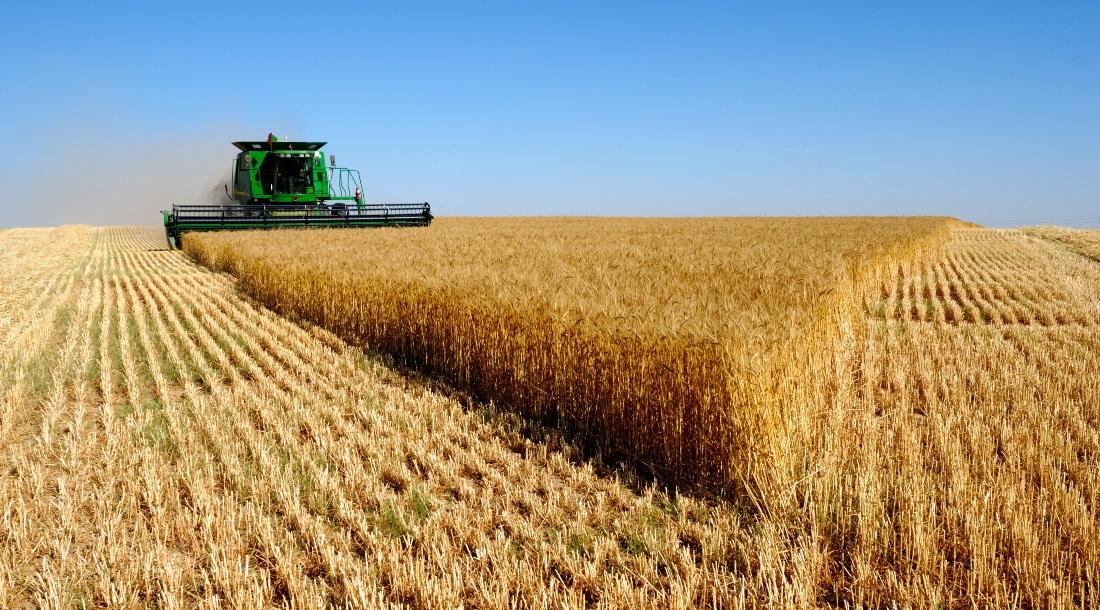 Сельское хозяйство картинки на рабочий стол, объемные раскладные открытки