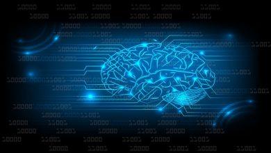 Photo of В ПВТ научились подключать мозг к компьютеру