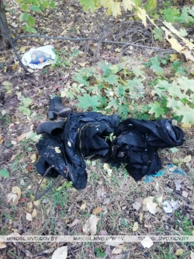 в лесу под Минском нашли пропавшую девушку