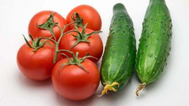 Огурцы и помидоры на белом фоне