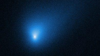 комета-пришелец