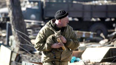 военный держит котёнка на руках