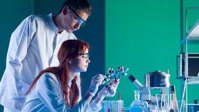 химики, специалисты