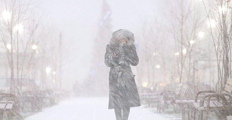 погода, сильный снег и ветер
