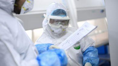 Photo of Минздрав: коронавирус выявили у жительницы Гродно