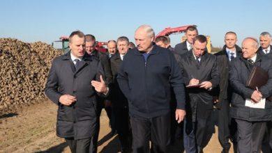 Photo of Лукашенко потребовал активизировать весенние полевые работы