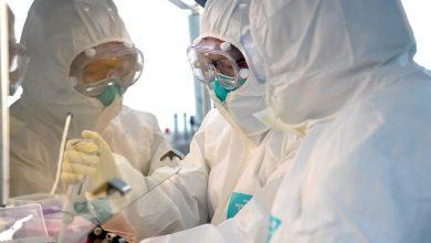 Photo of Китайские учёные обнаружили антитела, способные блокировать Covid-19