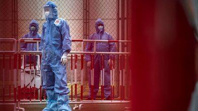 Photo of Бубонную чуму подтвердили у скотовода на севере Китая