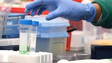 Photo of США обвинили Китай в воровстве данных о вакцине против коронавируса