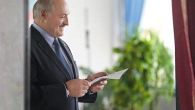 Photo of Лукашенко назвал протестующих овцами, которыми управляют из-за границы