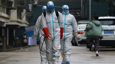 Photo of ВОЗ зафиксировала рекордное число заболевших коронавирусом за сутки