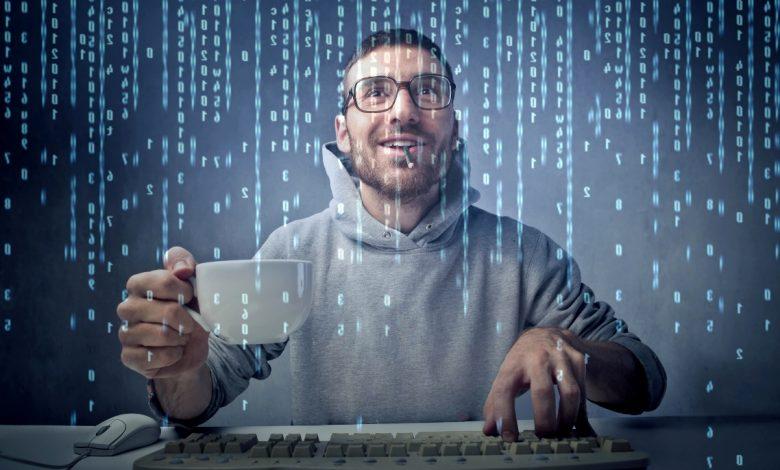 IT-сфера, компания, программист