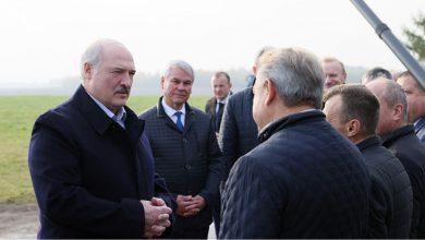 Photo of Лукашенко посещает предприятие с самой высокой урожайностью картофеля в стране