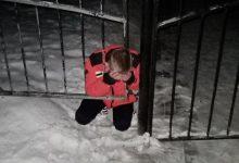 Photo of В Светлогорске мужчина застрял головой в заборе