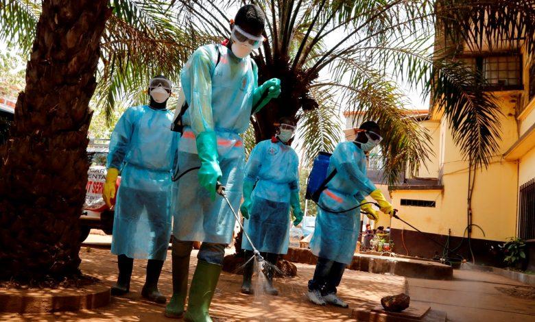 ВОЗ заявила о снижении числа новых случаев заражения коронавирусом Covid-19 в мире