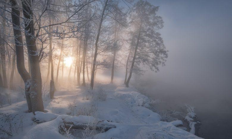 туман, зима