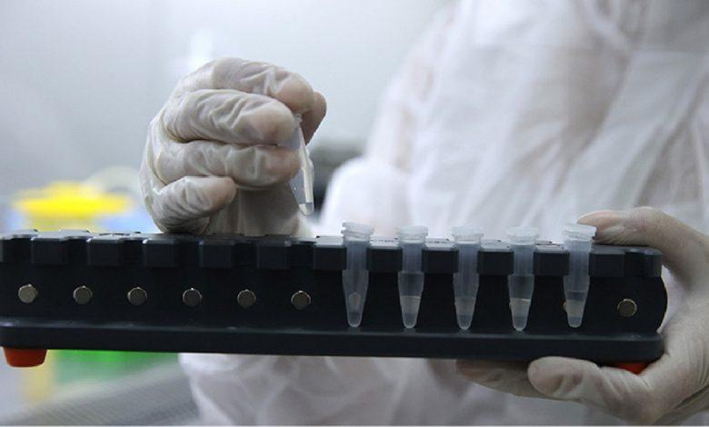 За минувшие сутки в Беларуси зарегистрировали 1 239 новых случаев коронавируса