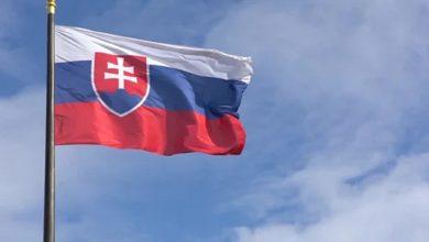 Photo of Жители Словакии потребовали провести референдум о досрочных парламентских выборах
