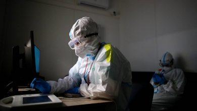 Photo of Заболеваемость и смертность от COVID-19 в мире вышла на плато