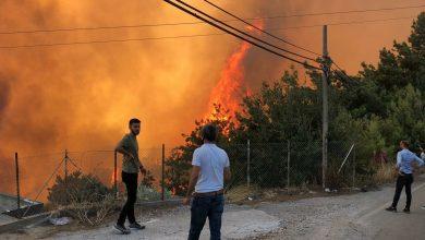 Photo of Четыре человека погибли в результате лесных пожаров в Турции