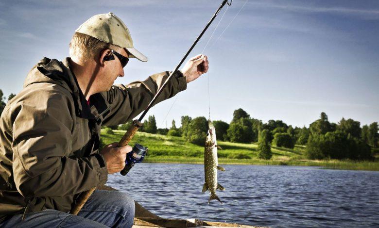 любительская рыбалка, рыболовство