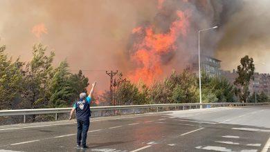 Photo of Не менее 3 человек погибли из-за пожаров в провинции Анталья