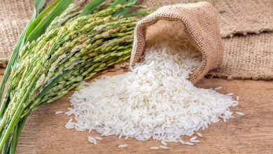 Photo of Власти Беларуси разрешили повысить цены на рис в стране