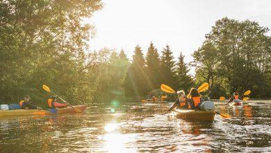Photo of За 2020 год экологические объекты Беларуси посетили больше 400 тысяч человек