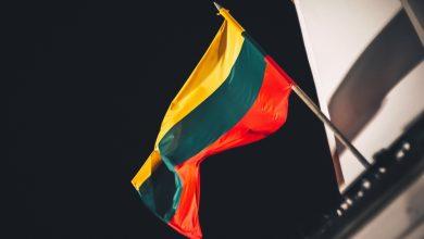 Photo of В Минобороны Литвы сочли провокацией информацию о гибели иракца