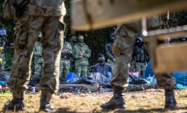 нелегальные мигранты на границе с Литвой