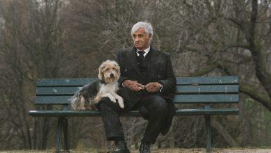 Photo of Аферист, секретный агент и одинокий старик: вспоминаем лучшие роли Бельмондо!
