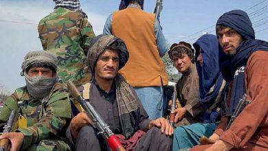 Photo of В Панджшере ликвидировали около 600 боевиков «Талибана»