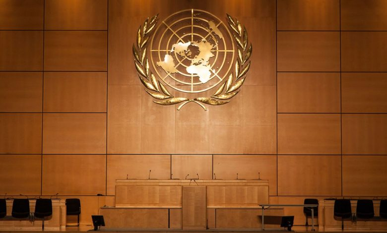 эмблема ООН, Организация Объединённых Наций