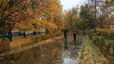 Photo of Оранжевый уровень опасности объявлен в Беларуси на 18 сентября