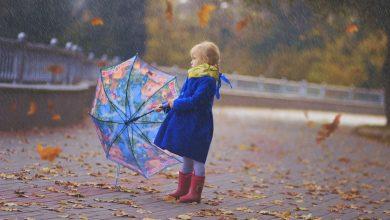 Photo of Дожди и порывистый ветер прогнозируют синоптики 19 сентября