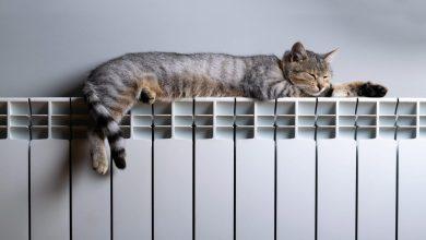 Photo of Включать отопление в квартирах Витебской области начнут 21 сентября