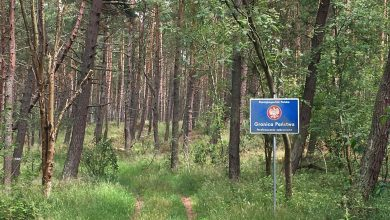 Photo of Польские пограничники зафиксировали 739 попыток незаконного пересечения границы