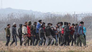 Photo of Ирак поможет своим мигрантам, застрявшим на литовско-белорусской границе