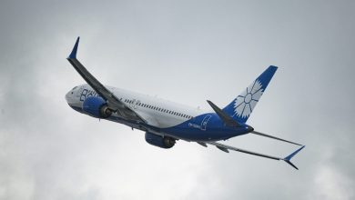 Photo of В Департаменте по авиации опровергли участие «Белавиа» в перевозке нелегалов